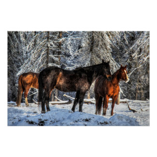 """Winter Horses """"Year of the Horse"""" Equine photo Poster"""