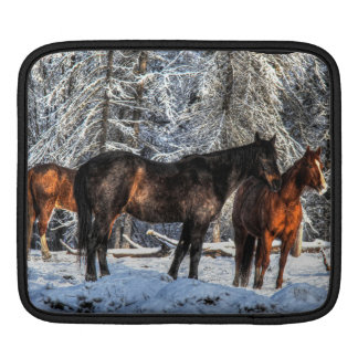 "Winter Horses ""Year of the Horse"" Equine photo Sleeve For iPads"