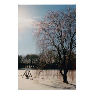 Winter Ice Tree Bench Poster