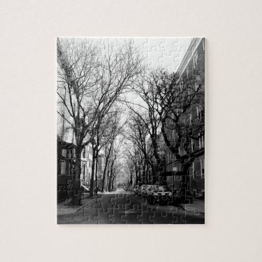 Winter in Brookly, NY Rompecabezas Con Fotos