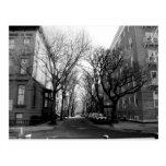 Winter in Brookly, NY Tarjetas Postales