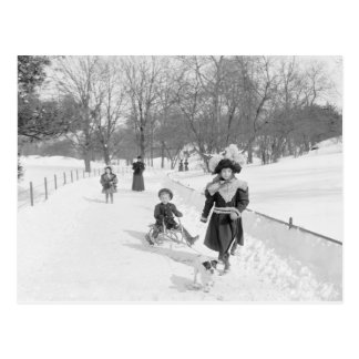Winter in Central Park, 1900 Postcard