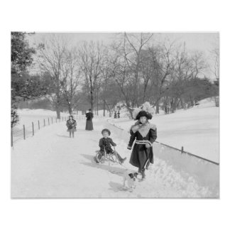 Winter in Central Park, 1900. Vintage Photo Poster