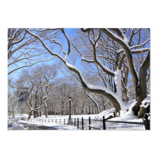 Winter in Central Park, New York City Card