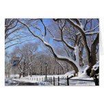 Winter in Central Park, New York City Greeting Card