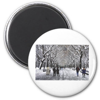 Winter in Central Park NYC Magnet