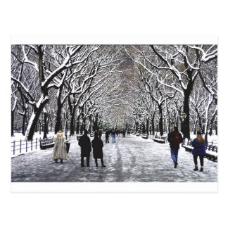 Winter in Central Park NYC Postcard