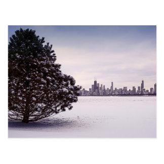 Winter in Chicago Postcard