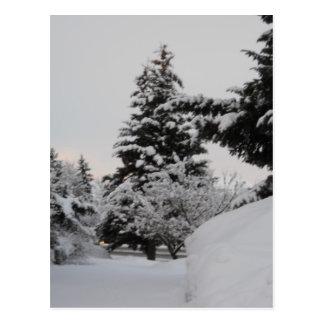 Winter in Idaho Post Card