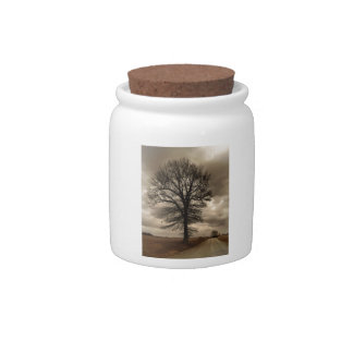 Winter in Kansas Gifts and Phone Cases Candy Jars