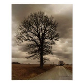 Winter in Kansas on the Old Dirt Road Poster