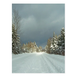 Winter In Maine Postcard