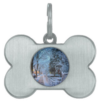 Winter in Montreal Pet Tag