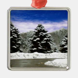 Winter in New England Christmas Ornaments