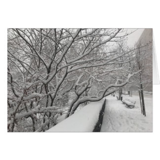 Winter in New York City Riverside Park Snow NYC Card