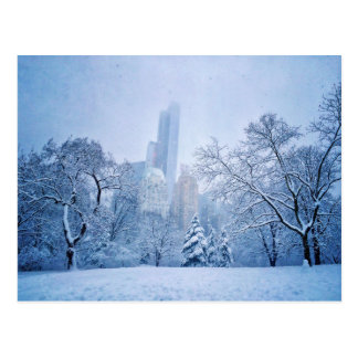Winter In New York City's Central Park Postcard