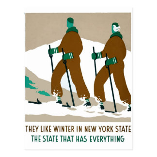 Winter in New York State Postcard