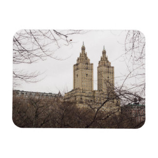 Winter in New York with the view of The San Remo Magnet