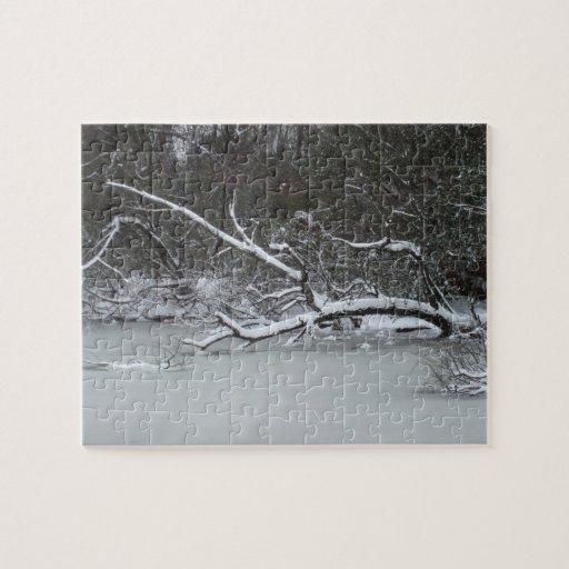Winter in north Alabama Puzzle