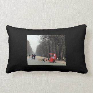 Winter in Paris Lumbar Pillow