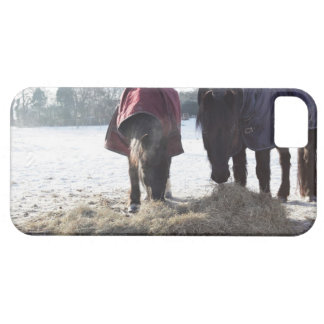 Winter in Rural Hertfordshire, England iPhone 5 Cover