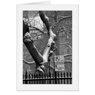 'Winter in the City' Holiday Card - Winter Season