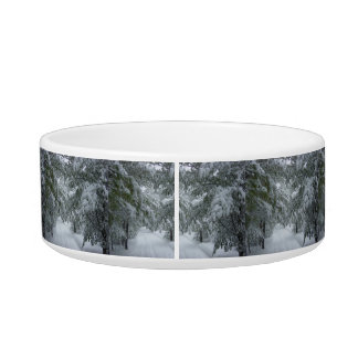 Winter in the Forest Bowl