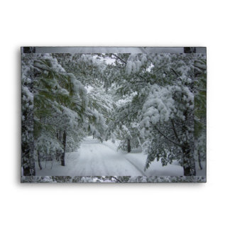 Winter in the Forest Envelope