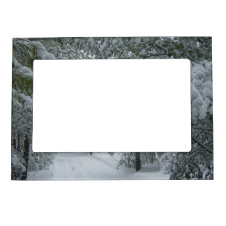 Winter in the Forest Picture Frame Magnet