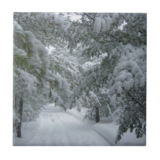 Winter in the Forest Tile