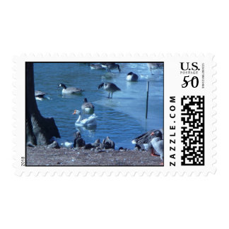 Winter in the park postage