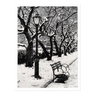 Winter in the Park - Postcard