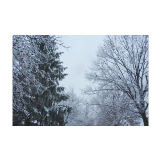 WINTER IN THE TREES canvas