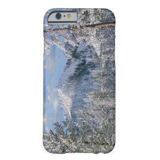 Winter in Yellowstone National Park, Wyoming Barely There iPhone 6 Case