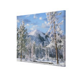 Winter in Yellowstone National Park, Wyoming Canvas Prints