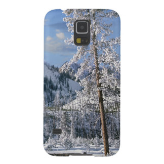 Winter in Yellowstone National Park, Wyoming Case For Galaxy S5