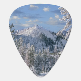 Winter in Yellowstone National Park, Wyoming Guitar Pick