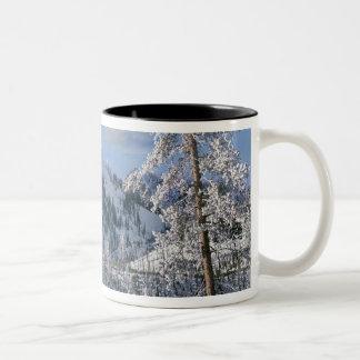 Winter in Yellowstone National Park Wyoming Mug