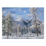 Winter in Yellowstone National Park, Wyoming Art Photo
