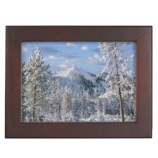 Winter in Yellowstone National Park, Wyoming Keepsake Box