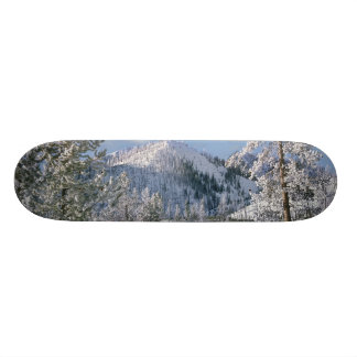 Winter in Yellowstone National Park, Wyoming Skateboard Deck