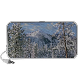 Winter in Yellowstone National Park Wyoming iPod Speaker