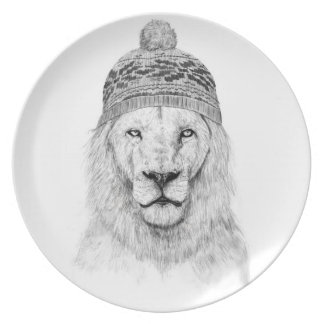 Winter is coming dinner plates