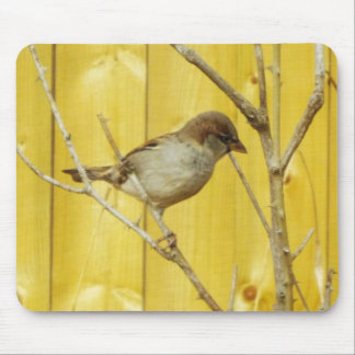Winter is comoing bird branches mousepad