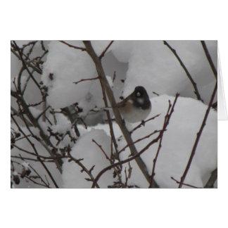 Winter Junko Card