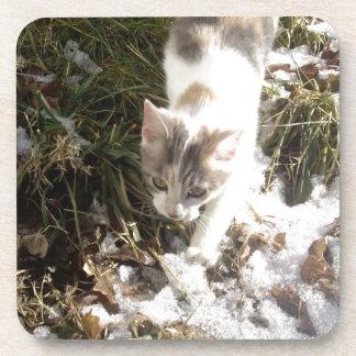Winter Kitten Beverage Coaster