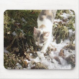 Winter Kitten Mouse Pad