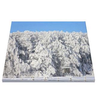winter landscape 03.jpg stretched canvas prints