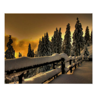Winter Landscape Fence Photo Nature Wall Poster