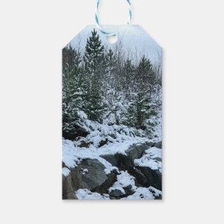 Winter Landscape Michigan Gift Tags